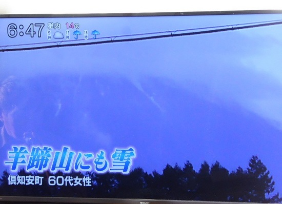 初雪③.JPG